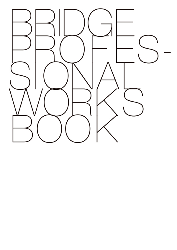 Bridge Professional Works Book